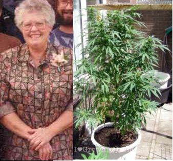 Reba McWhorter vs the Hippie Menace