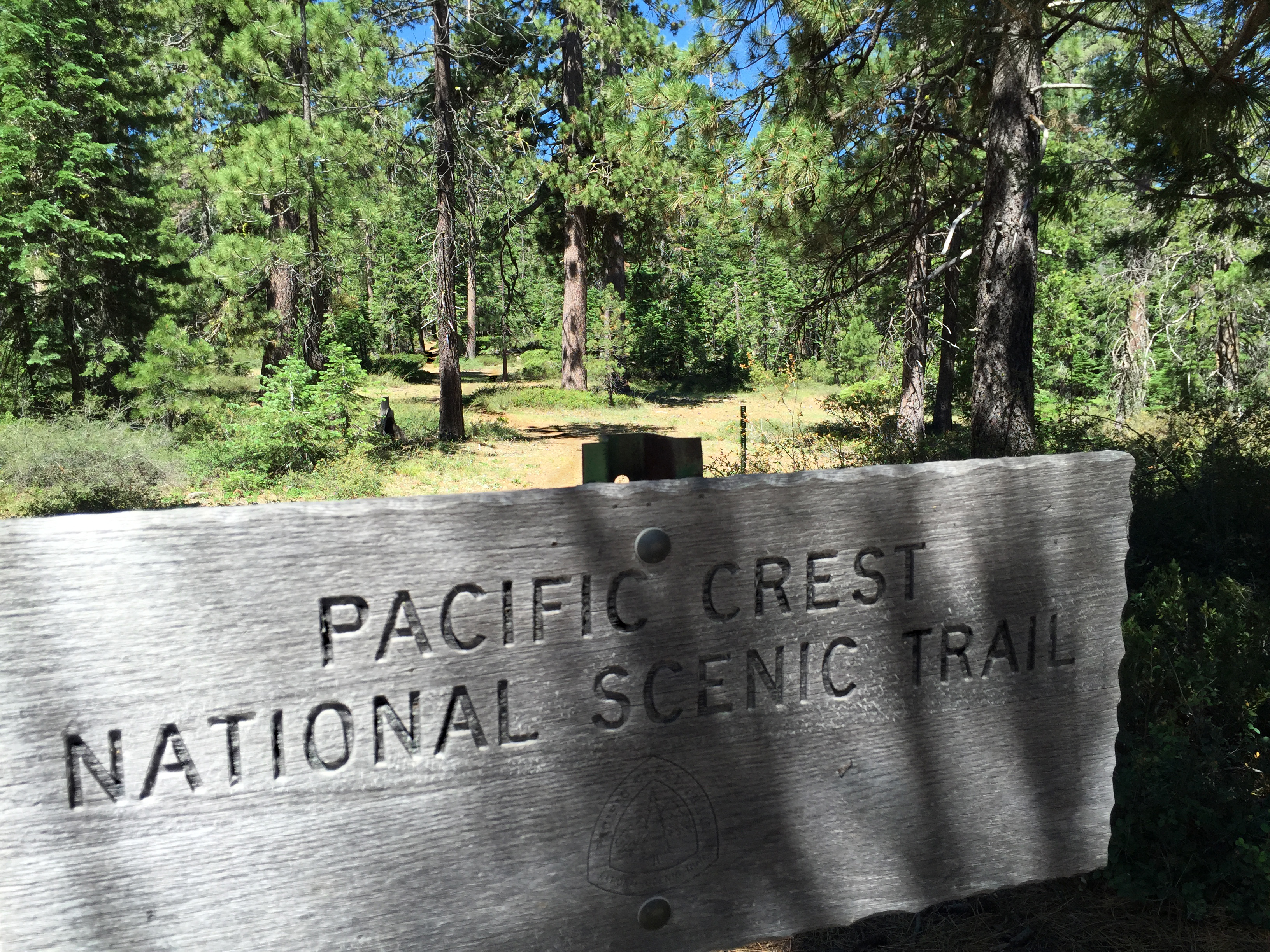 PCT sign fotogail